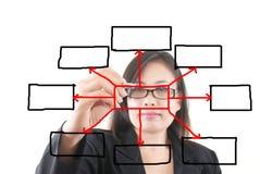 Programma di scrittura della donna di affari nel whiteboard. Immagine Stock