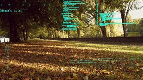 Programmacodes in een park