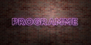 PROGRAMME - fluorescent Neon tube Sign on brickwork - Front view - 3D rendered royalty free stock picture. Can be used for online banner ads and direct mailers Royalty Free Stock Images