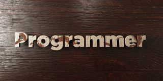 Programmer - grungy wooden headline on Maple  - 3D rendered royalty free stock image Stock Photos