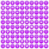 100 programmer icons set purple. 100 programmer icons set in purple circle isolated on white vector illustration vector illustration