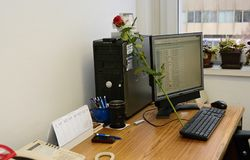 A work desk with a computer a and roses stock image