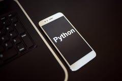 Programmera språkpytonorm för mobil utveckling, begrepp Smartphone nära bärbara datorn royaltyfria foton