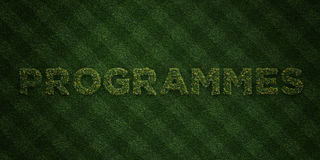 PROGRAMMES - fresh Grass letters with flowers and dandelions - 3D rendered royalty free stock image Stock Images