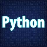 Programmierungskodierung Pythonschlange vektor abbildung