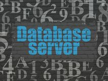 Programming concept: Database Server on wall background Stock Image