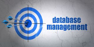 Programming concept: target and Database Management on wall background. Success Programming concept: arrows hitting the center of target, Blue Database Stock Photos