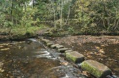 Progresiones toxicológicas al parque local en el lado de la trayectoria del canal en Uppermill Imagenes de archivo