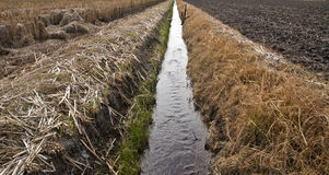 Progreso de la agricultura Imagen de archivo