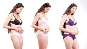 Progresso di gravidanza immagini stock