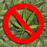 Prohibition sign on cannabis. Seamless background Royalty Free Stock Photography