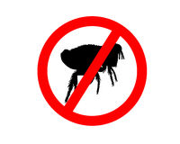 Prohibition sign for fleas on white Royalty Free Stock Image