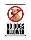 Prohibitory sign with text no dogs allowed. Isolated on white background Royalty Free Stock Photography