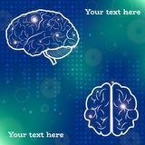 Proiezioni del cervello umano Fotografia Stock Libera da Diritti