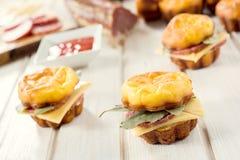 Proja sandwichs stock photography