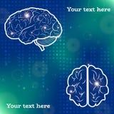 Projeções do cérebro humano Fotografia de Stock Royalty Free