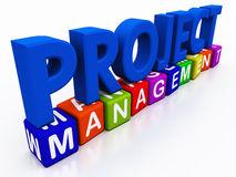 Project management. On white space, project in simple text with management in colored blocks showing management diversity handling a project well royalty free illustration