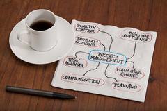 Free Project Management Concept - Napkin Doodle Royalty Free Stock Photography - 19629497