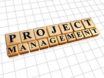 Project management in golden cubes Stock Photo