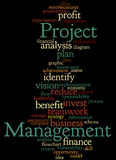 Project Management, word cloud concept 7. Project Management, word cloud concept on white background Royalty Free Stock Photography