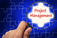 Project management word. Magnifier and puzzles. Royalty Free Stock Photos