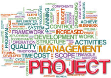Project management  wordcloud Royalty Free Stock Photo