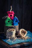 Project of small bird house and plan to build it Royalty Free Stock Photography