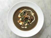 Projectile de dessus de soupe à champignons Photos stock