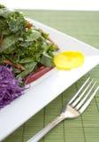 Projectile de nourriture de salade Photographie stock