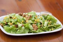 Projectile extérieur de la salade végétale Images libres de droits