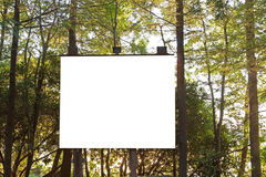 Projection Board in the Woods Stock Images
