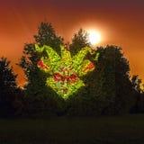Projection légère à l'arbre en parc de Kolomenskoje Libérez le cercle international de festival d'air ouvert de la lumière photographie stock