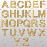 Projektów elementy - złoto druciana 3D chrzcielnica Obrazy Royalty Free