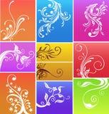 projektów flores royalty ilustracja