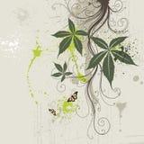 projekt kwiecisty ilustracji