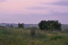 Projekt natury piękna nieba lato Zdjęcia Royalty Free