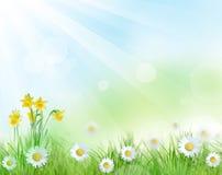 projekt piękna wiosna ilustracji