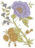 projekt twój ilustracyjny Paisley Zdjęcie Royalty Free