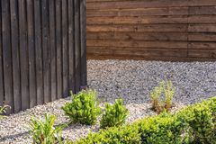 Projekt własność z drewnianym ogrodzeniem, staczającym się żwirem i indywidualnymi roślinami, obraz royalty free