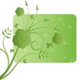 projekta ekologiczna kwiatu zieleń Fotografia Royalty Free
