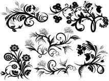 projekta elementów florals Obrazy Royalty Free