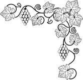 projekta elementu gronowy winograd Zdjęcia Stock