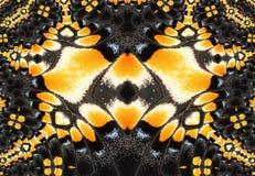 projekta fractal Zdjęcie Royalty Free