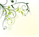 projekta kwiatów zieleń ilustracji
