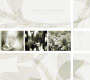 projekta kwiat Zdjęcie Royalty Free