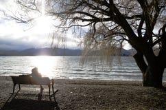 projekta wizerunku drzewa zima obraz stock