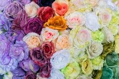 Projekta wzór kwiatu tło i tekstura Fotografia Royalty Free