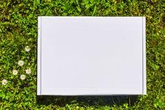 Projektuję akcyjny photograpjy, w górę cyfrowej kartoteki Puste miejsce kwadrat dla sztuki pracy z zielonej trawy i białych kwiat zdjęcia stock