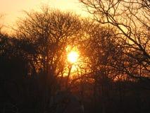 projektuje śmiesznego wizerunku setu słońce twój Fotografia Stock