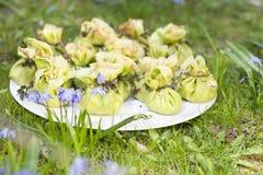 Projektuje bliny na trawie obraz royalty free